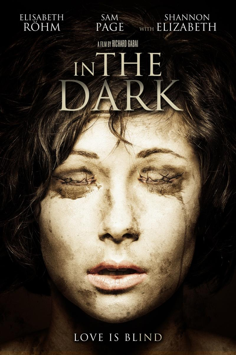 In the Dark / В сянката на съмнението (2013)